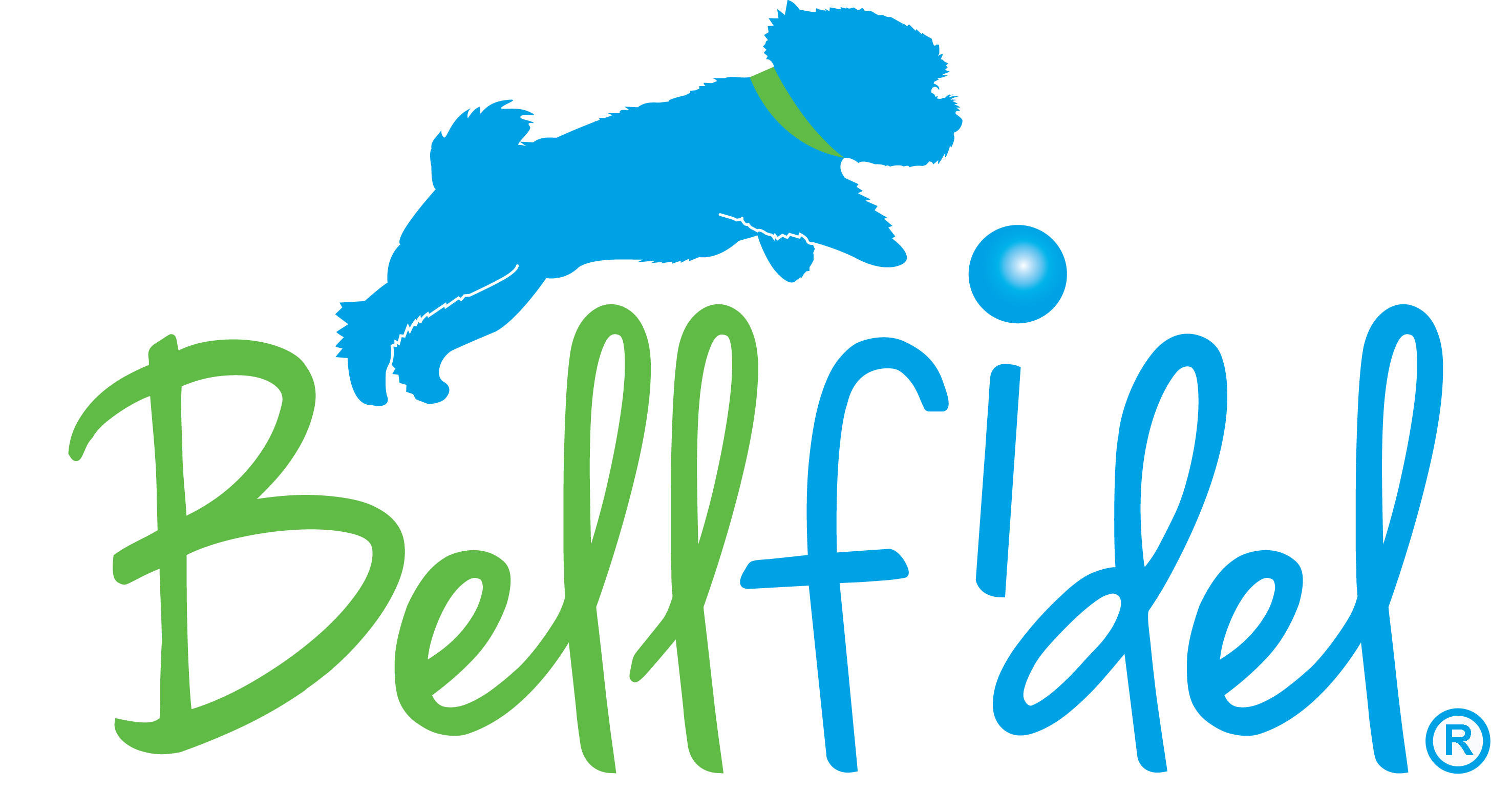 Bellfidel